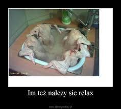 si e relax im też należy sie relax demotywatory pl