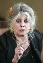 Birdget Bardot - brigitte bardot says trump unfit after permitting elephant