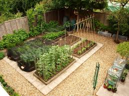 Garden Design With Productive Vegetable Gardening Tips For - Home and garden designs 2
