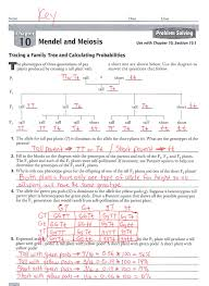28 9th biology final exam review guide answers 134559 9th
