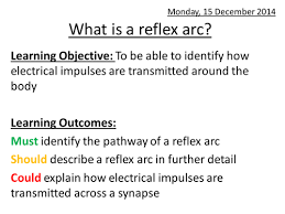 Describe A Reflex Action What Is A Reflex Arc By Amberprice Teaching Resources Tes