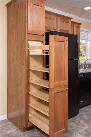 Large Storage Shelves by Kitchen Storage Cabinet With Shelves Roll Out Drawers Cabinet