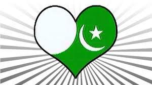 Pakistan Flag Picture Black Ops 2 Pakistani Flag Emblem Tutorial Youtube
