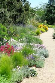 Backyard Landscaping Pictures by Best 25 Xeriscaping Ideas On Pinterest Desert Landscaping