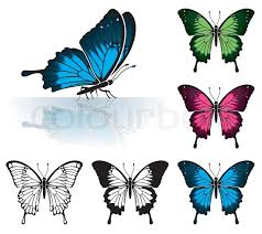 collect many coloured butterfly with a mirror reflection element