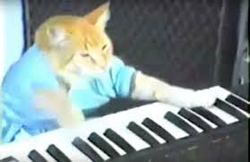 Cat Playing Piano Meme - r i p to keyboard cat an internet legend the outline
