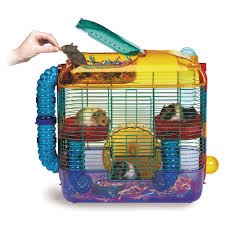 Petsmart Small Animal Cages Gerbil Cages Petsmart