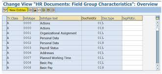 sap document types table sap hcm tip setting up change logging for infotypes hr focal point