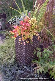271 best container garden ideas images on pinterest garden