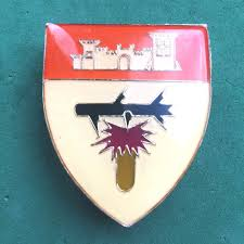 ethosa area force unit flash badge swatf sadf african africa