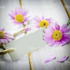 flowers coupon flowers coupon stock photo 505954863 istock