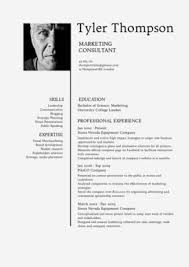template cv 15 best resume design template images on pinterest professional