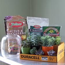 floral verde llc succulent terrarium tutorial