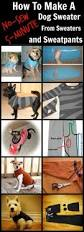 thanksgiving dog sweater how to turn old sweaters and sweatpants into no sew dog sweaters in 5