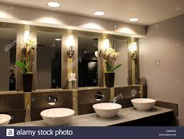ultra chic bathroom with fancy sinks mirrors and flower stock