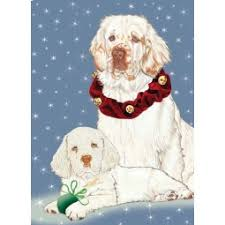 clumber spaniel dog breeds shop by pet