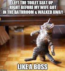 Boss Meme - cat walking like a boss meme generator imgflip