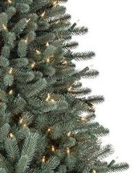 best christmas tree deals black friday 25 best christmas trees on sale ideas on pinterest christmas