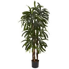 Palm Tree Runner Rug Faux Raphis Palm Tree In Pot U0026 Reviews Joss U0026 Main