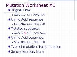 definitions mutation u2013 any change in the genetic sequence ppt