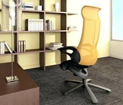 Zebra Print Desk Chair Zebra Print Chaise Lounge Chair Animal Outdoor Wicker Upholstery