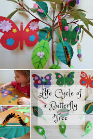 life cycle of a butterfly craft tree someone u0027s mum