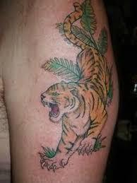 beautiful tiger design