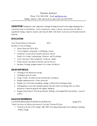 resume examples templates free examples mccombs resume template