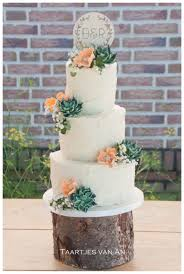 wedding cake rustic rustic weddingcake with succulents cakecentral