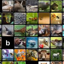 a is for animals apps part i trail to a texas trial