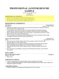Custodian Resume Skills 100 Caregiver Resume Samples Nanny And Caregiver Resume Example