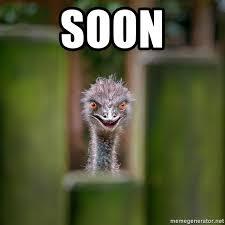 Soon Meme - soon rapist ostrich meme generator