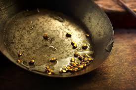 california gold rush resources surfnetkids