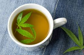 amazon tea elev8 brands inc hemp tea is available on amazon prime potnetwork