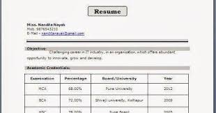 resume headline for freshers resume format for bca freshers professional curriculum vitae