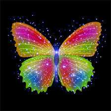 free colorful butterfly vector free vector 23 326 free