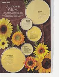 top paint colors sunflowers gardens and color yellow