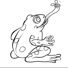 frog cycle coloring page 28 images cycle coloring pages frog