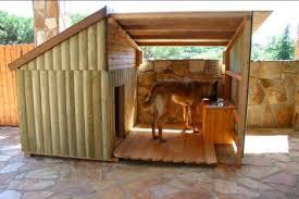 Dog Backyard Playground by Top Dog Friendly Backyards Healthy Paws
