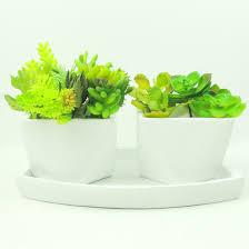 list manufacturers of succulent pots buy succulent pots get
