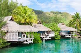 bora bora by sky sea helicopter and diving vacation tour zicasso