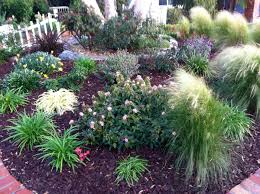 Grassless Backyard Ideas Yard No Grass Karen S Lawn Front In California Fine Gardening