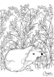 cute hedgehog coloring design ms colouring pages