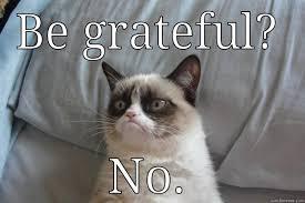 Gratitude Meme - attitude of gratitude quickmeme
