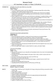 financial planning and analysis resume examples analyst planning resume samples velvet jobs