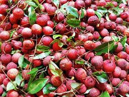 lychee fruit inside green queen living wet market series part 7 guide to chinese