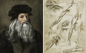 Leonardo Da Vinci Human Anatomy Drawings Leonardo Da Vinci Anatomy Of An Artist Telegraph