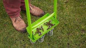 lawn blog november at homebase co uk