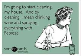 House Cleaning Memes - cleaning my house ecard