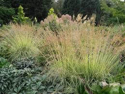 Rock Garden Bellevue by A Visit To The Bellevue Botanical Garden Sublime Garden Design